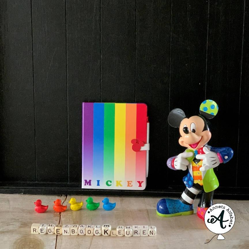 een georganiseerde kast in regenboogkleuren